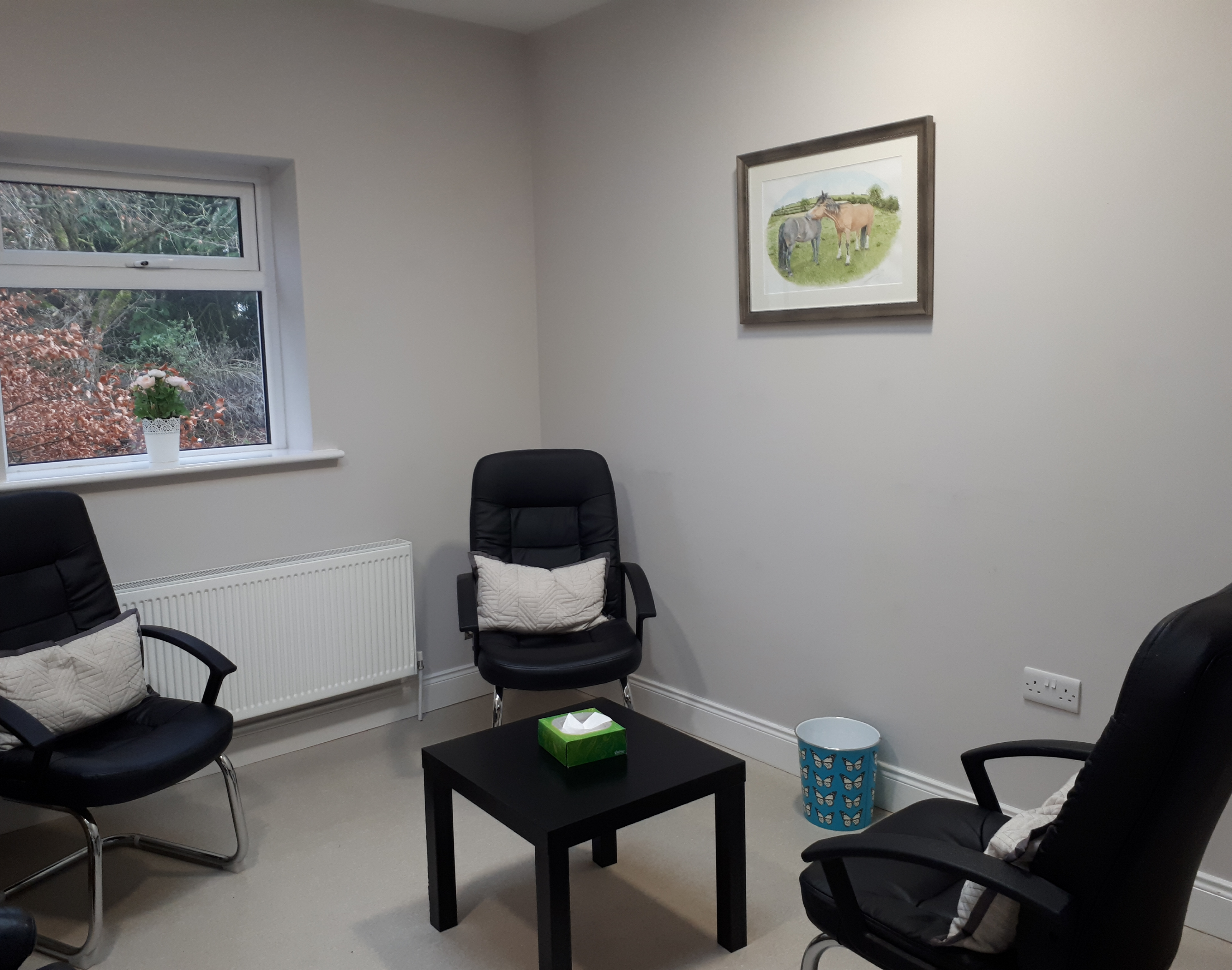 Northstar Counselling Therapy Room Roscrea Tipperary